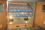 Máy ấp trứng GC,may ap trung gc